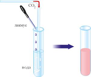 Розчинення вуглекислого газу у воді