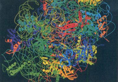 Комп'ютерна модель білка рибосоми