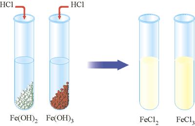Взаємодія ферум(ІІІ) гідрокиду та ферум(ІІ) гідрокиду з розчином кислоти